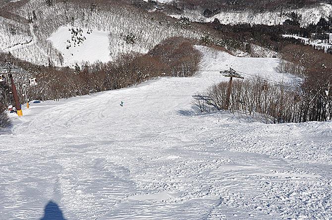 コース「ホワイトリボンコース」