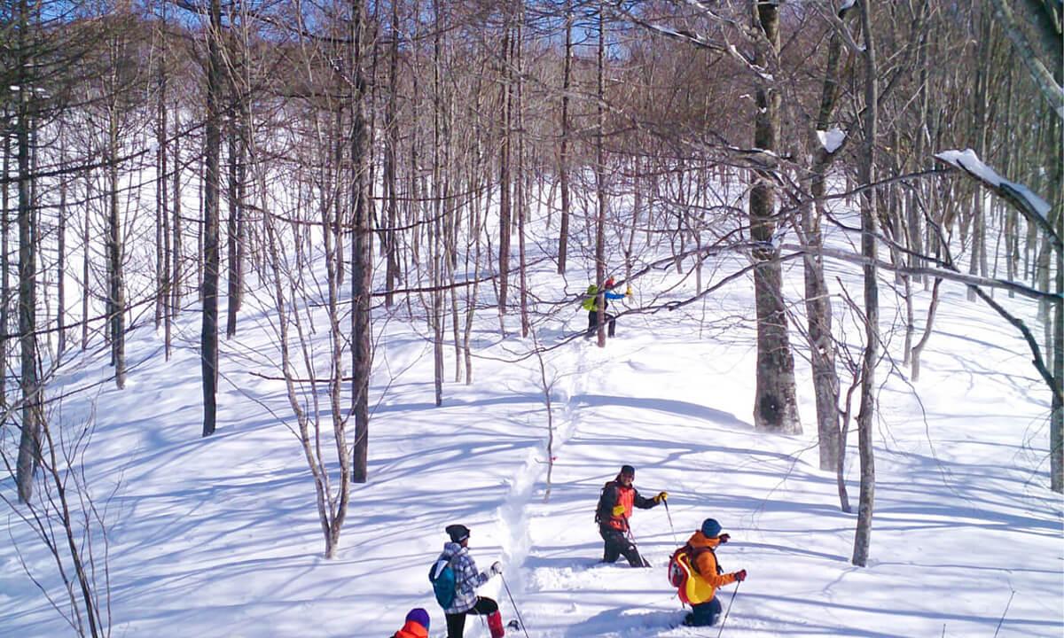 白馬岩岳マウンテンリゾート スキースクール